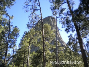 Devils Tower from Trail