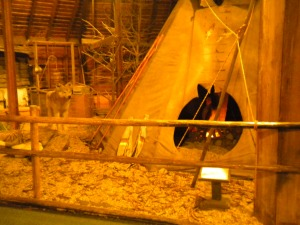 Dances with Wolves teepee