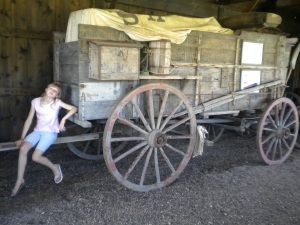 Dances with Wolves supply wagon