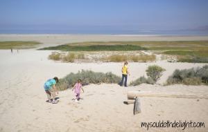 Antelope Island Beach