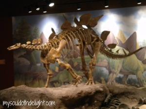 Utah Field House of Natural History Museum 2