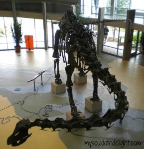 Utah Field House of Natural History Museum 5