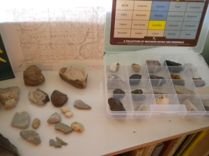 Nature Study Table Geology