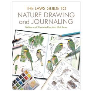laws-guide-to-nature-drawing-and-journaling-cover